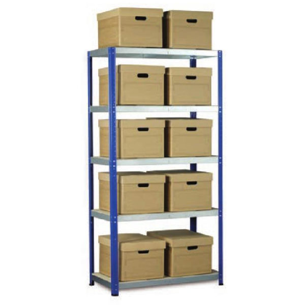 Ecorax Shelving with 10 Archive Boxes